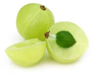 indian gooseberry 2
